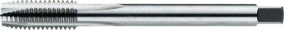 International Tools ECO PRO HSS-E Machinetap DIN 376 Metrisch voor doorlopende gaten M10 221961000