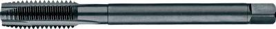 Phantom HSS-E PM Machinetap DIN 376 Metrisch, stoomontlaten, roestvaststaal voor doorlopende gaten M 226012400